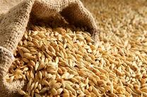 کشف 30 هزار کیلو گندم احتکار شده در بویین میاندشت