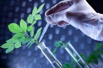 نخستین شتاب دهنده زیست فناوری پزشکی کشور تاسیس شد