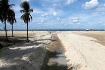 کشف ابر باکتری خطرناک در سواحل ریودوژانیرو