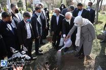 کاشت نهال دوستی با حضور وزیر امور خارجه