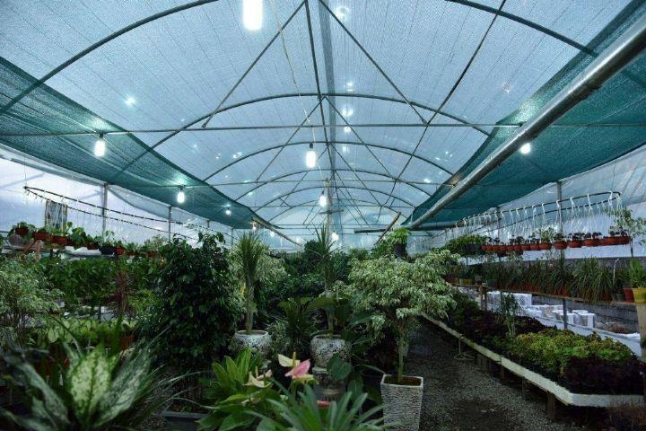 ایران ۱۰۰ میلیون دلار سازه و نهاده گلخانه ای صادر کرد