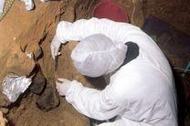 دی.ان.ای گونههای منقرض انسان در رسوبات غارها کشف شد