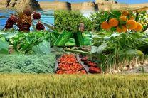 2 پروژه کشاورزی درشهرستان لنجان افتتاح شد