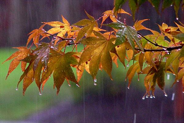 رگبار پراکنده باران ازفردا برخی مناطق قم را در بر می گیرد