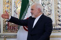 رئیس کمیسیون سیاست خارجی مجلس برزیل با ظریف دیدار کرد