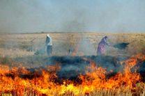 سوزاندن کاه و کلش ممنوع است و با متخلفان برخورد میشود