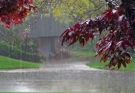 بارش باران در کهگیلویه و بویراحمد از بامداد یکشنبه