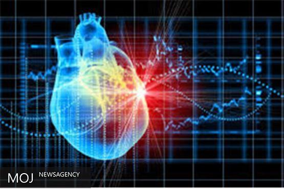 سنگ کیسه صفرا سبب افزایش خطر ابتلا به بیماری قلبی می شود