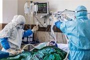 توقف روند صعودی بستری بیماران  مبتلا به کرونا در تهران