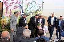 طرح هر شهید یک درخت در یزد اجرا می شود