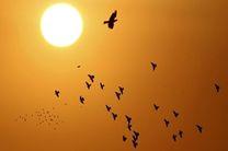 فردا خوزستان میزبان گرد و غبار است