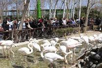 بازدید 110 هزار نفر از مسافران نوروزی از مراکز گردشگری و تفریحی ناژوان