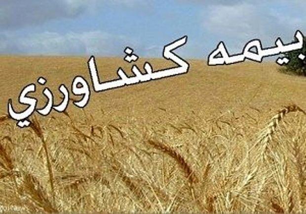 محصولات کشاورزی کرمانشاه تا پایان دی فرصت بیمه دارند