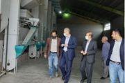 مجهزترین واحدهای برنج کوبی در منطقه مغان راه اندازی شد