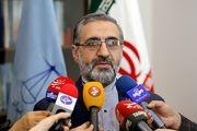 سخنگوی قوه قضائیه درباره بازداشت مدیرعامل ایران خودرو توضیح داد
