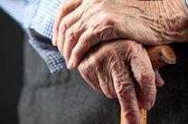 وجود بیش از 28 هزار سالمند تحت حمایت کمیته امداد در اردبیل
