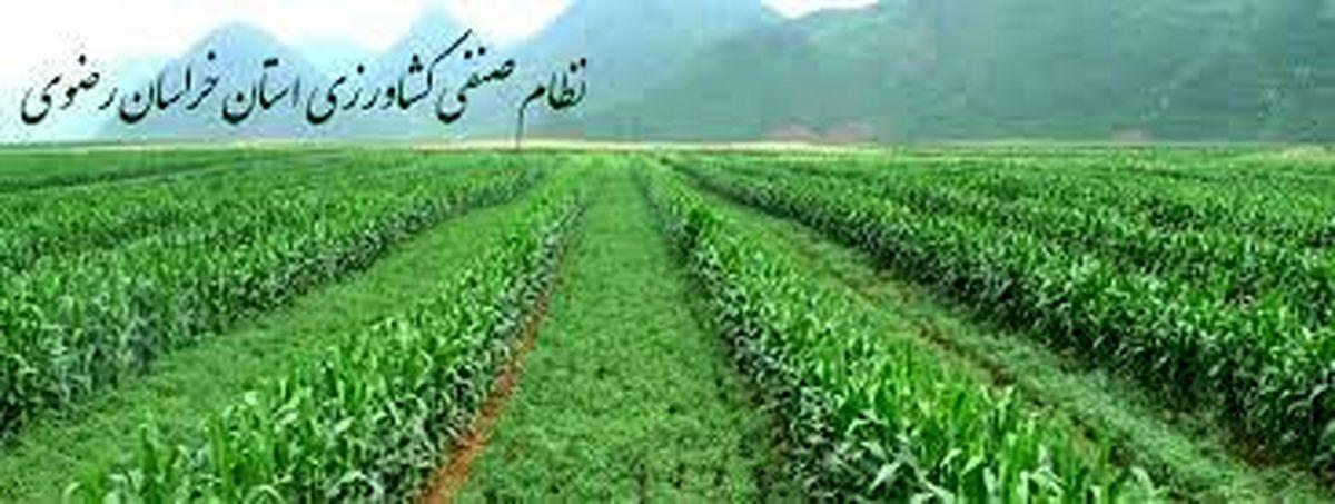 نظام صنفی کشاورزی و منابع طبیعی خراسان رضوی با ۱۳۹ هزار عضویت