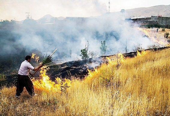 4 هکتار از فضای سبز توس نوذر در آتش سوخت