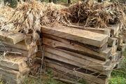 کشف 4/5 تن چوب قاچاق در صومعهسرا