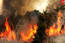 شمار قربانیان آتش سوزی های آمریکا اعلام شد