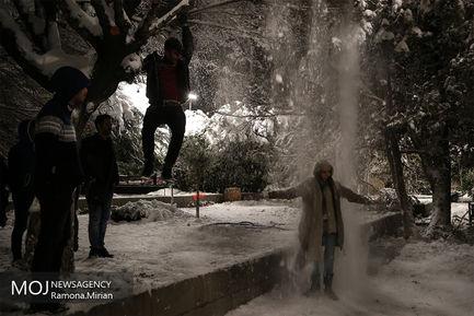 برف بازی در تهران