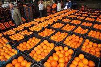 آغاز توزیع میوه شب عید با قیمت مصوب از امروز در تهران