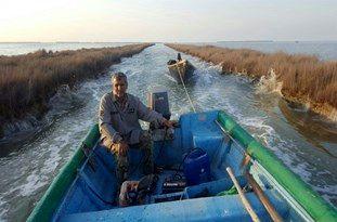 کشف و ضبط یک فروند قایق موتوری از صیادان غیرمجاز در خلیج میانکاله