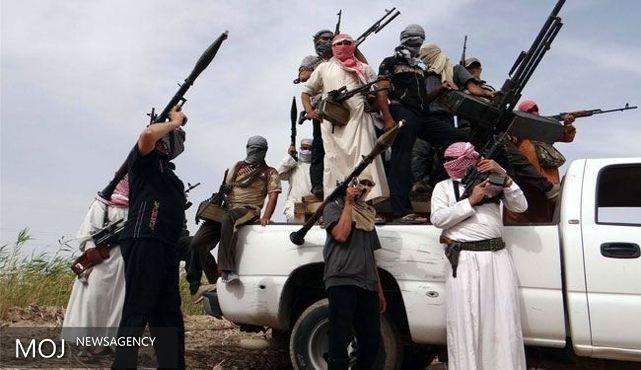 القاعده قصد انجام عملیات در امارات را دارد