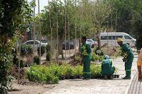 احداث بوستان ۵۰۰۰متری در منطقه۱۳؛ بزودی/ساخت ۲بازار میوه وتره بار