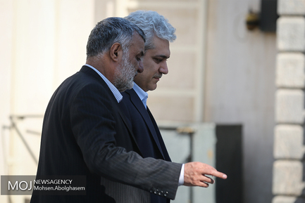 حاشیه جلسه هیات دولت - ۲۴ بهمن ۱۳۹۷