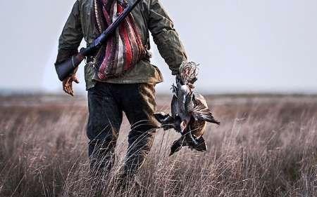 پروانه شکار پرندگان در بندرگز صادر شد/با رعایت ضوابط محیط زیستی