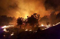 آتشسوزی جنگلهای استان گیلان  تلفات جانی نداشته است