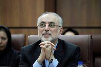مدیرکل موقت آژانس با علی اکبر صالحی دیدار کرد