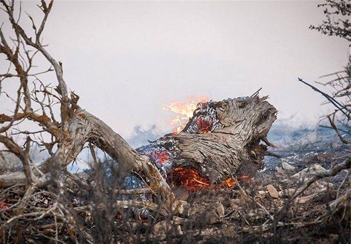 آتشسوزی در حاشیه پارک ملی گلستان مهار شد