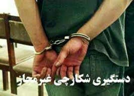یک متخلف شکار در شهرستان نجف آباد دستگیر شد / کشف  لاشه 2 راس کل و بز
