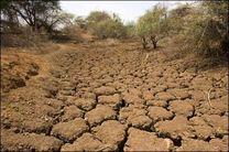 خسارت 65 میلیاردی خشکسالیهای اخیر به کشاورزان چابهاری
