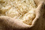 واردات برنج پرمحصول در دست بررسی است / استاندارد برنج باید راستی آزمایی شود