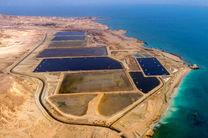 3 پروژه پرورش میگو در قشم افتتاح می شود