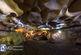 گرفتار شدن سه فرد غیر بومی در غار بابا احمد چالدران