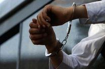 سارقان گوشی تلفن همراه تهران نو دستگیر شدند