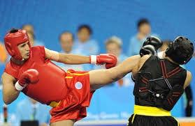 راهیابی ووشوکاران تیم ملی به فینال مسابقات جهانی/ ایران در یک قدمی قهرمانی جهان
