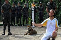 ارتش برزیل پلنگ المپیک را کشت