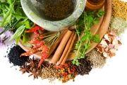نحوه استفاده از گیاهان دارویی برای درمان بیماری های مختلف
