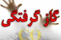 مسمومیت 4 نفر با گاز منوکسیدکربن در شهرستان نجف آباد