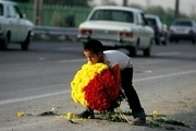 ساماندهی کودکان کار و خیابانی در سطح استان اردبیل