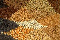 امحای یکتن خوراک دام آلوده در شهرستان هرسین