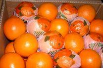 کشف ۱۳ تن پرتقال رنگ شده در مازندران