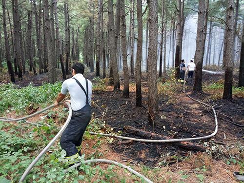 مهار آتش سوزی جنگل های شهر صنعتی رشت