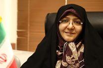 شهرداری در حمایت از تشکلهای ایمنی زنان و کودکان کوتاهی کرده است