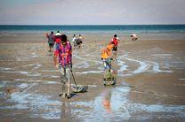 کاشت نهال حرا در سواحل جزیره هرمز
